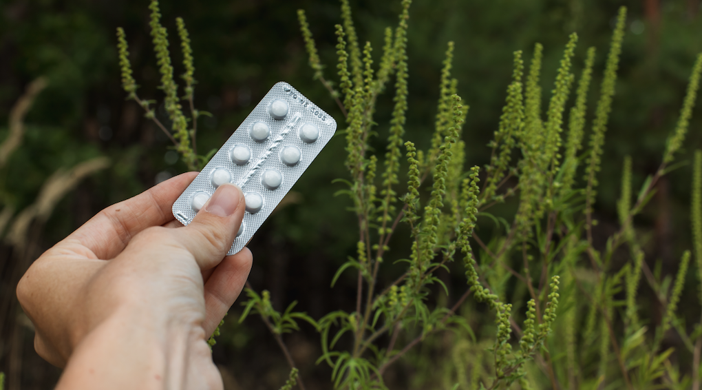 FAQ's about Allergy Medication